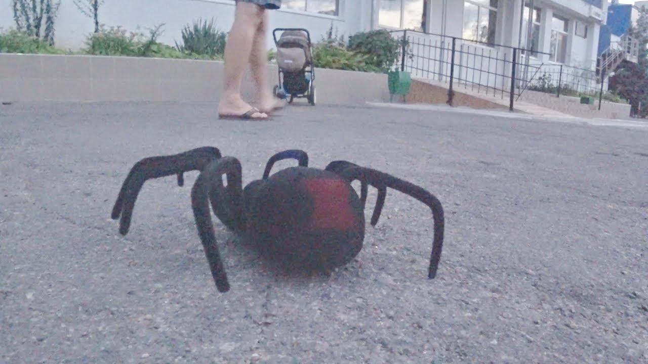 ПАУК НА ПУЛЬТЕ УПРАВЛЕНИЯ черная вдова! Распаковка и обзор unboxing spider black widow radio control