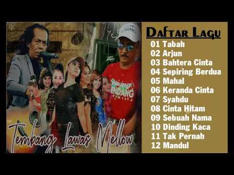 lagu-terbaik---dangdut-lawas-mellow-versi-koplo-new-pallapa-dan-monata