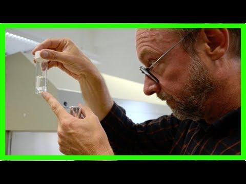 Найден способ побороть рак в последней стадии без химиотерапии | TVRu