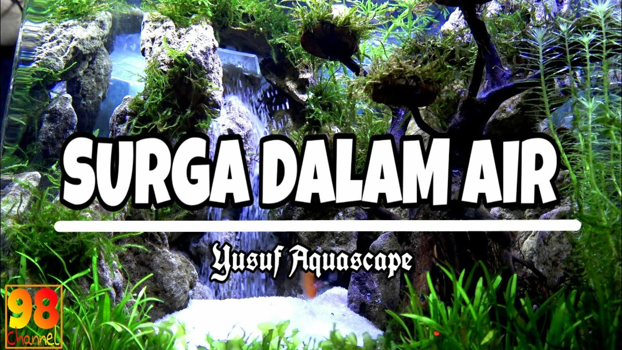 Aquascape Terindah / Surga dalam Air - YouTube