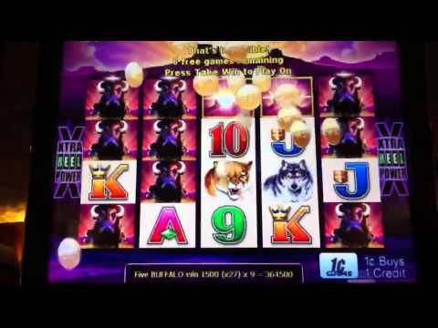 Buffalo Slot Machine Bonus Win Doovi