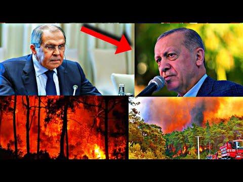 Մենք ենք Վառելել ձեր անտառները! Լավրովը խոստովանեց