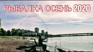 Ловля леща на фидер осенью. Рыбалка 2020. Фидер на течении