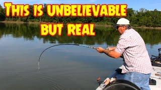 Huge Catfish takes the Bait