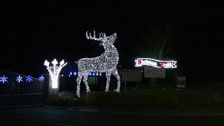 Wight Lights