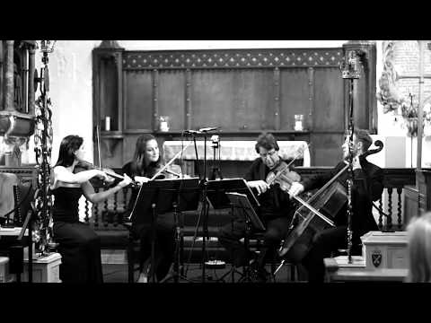 Complete Haydn Quartet in D Major Op. 20 No. 4, Badke Quartet