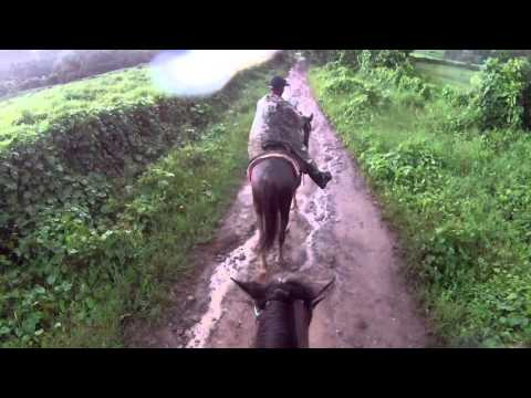 Carabali Horseback Ride 2016 Video 4