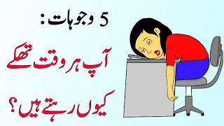 5 Reasons you're always Tired [Solution] - Urdu Hindi