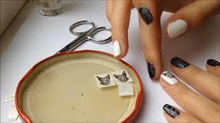 Чёрно-белый матовый маникюр с кошкой/nail art cat