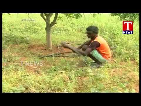 Dalits Thanked to CM KCR over Land Distribution Scheme   Telangana   TNews live Telugu