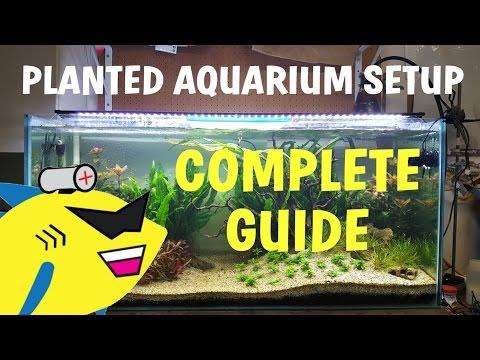 PLANTED AQUARIUM SETUP: Complete Guide To A Soil Planted Tank