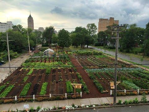 The Michigan Urban Farming Initiative