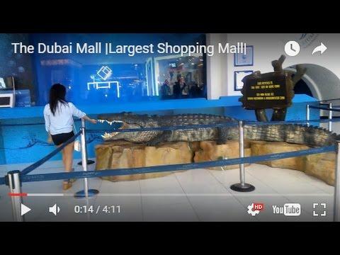 The Dubai Mall  Largest Shopping Mall 