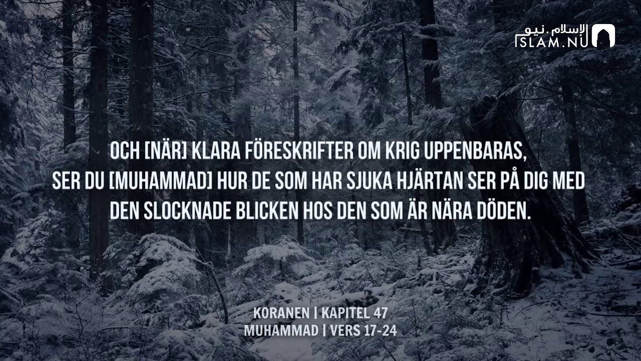 Surah Muhammad (17-24) - Muhammad Siddiq Al-Minshawi