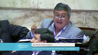 Diputado Selva Carlos Américo - Sesión 25-04-2018 - PL