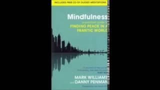 Mindfulness Meditation   Body Scan