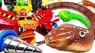 King Cobra appeared! PJ Masks are dangerous! Carbot Hyperbuildian, Tobot help me! - DuDuPopTOY