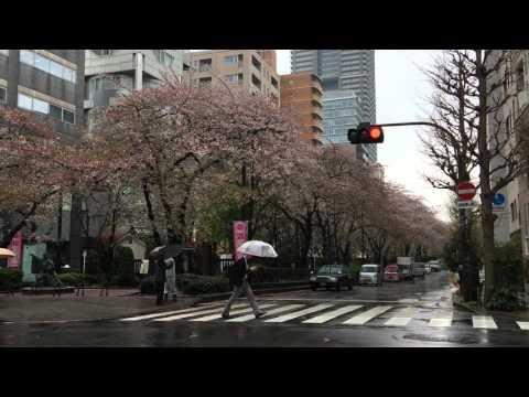 Hamacho Ryokudo Street (Nihonbashi, Chuo-ku, Tokyo)