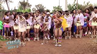 Zulu beauty (umemulo)