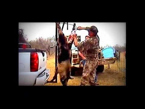 Randall Crow Hunting with Friends Campbellton Texas episode1
