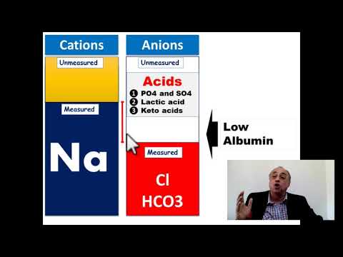 Anion Gap!!! [Very Important Clinical Note]