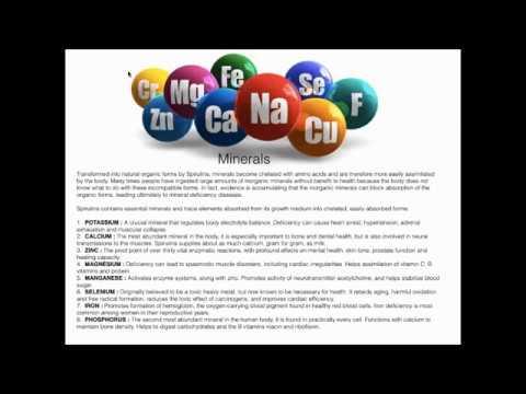 Wellness Webinar by Dr  Savera - Spirulina