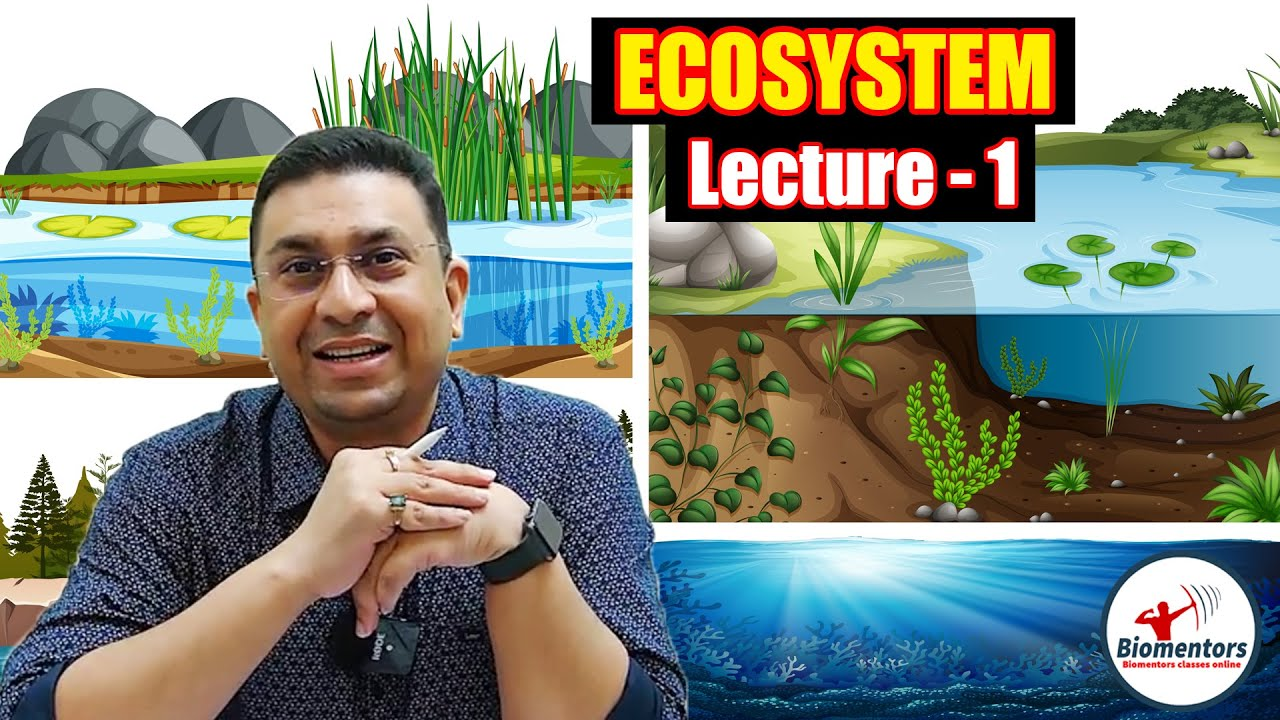 Download Ecosystem : Structure and Function L - 1   Class 12   NEET 2021   Biomentors NEET   Dr Geetendra Sir