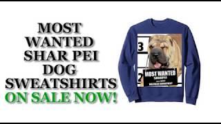 Most Wanted Shar Pei Cute Funny Dog Sweatshirts - Men's, Women's, Kid's - Black, Grey, Navy