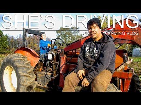 SHE'S DRIVING!!! (BURDOCK HARVEST, PART I) - ORGANIC FARMING VLOG (SE01 EP24)