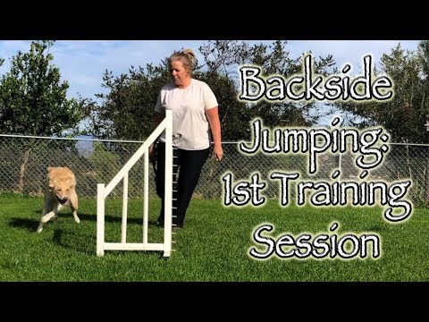 "Backside Jumping - Dog Agility ""How To"" 1st Session"