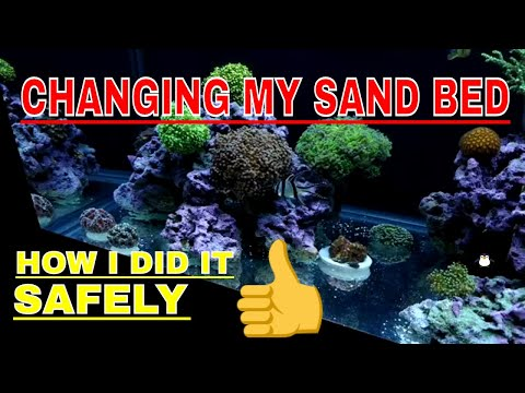 75 Gallon Reef Tank - Changing The Sand Bed - Caribsea Sand