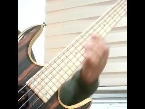 Talented message Ken smith bass guitar licks reserve, neither