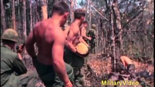 Operation MacArthur, 4th Infantry Division, Dak To, 1967, Vietnam War MP3