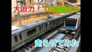 長い電車はロマンの塊!15両編成のE233系3000番台と1000番台を走らせてみた。[Nゲージ、鉄道模型、リビングレイアウト]