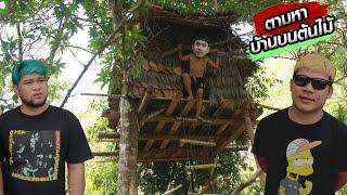 ตามหาบ้านต้นไม้ของ-my-mesuan