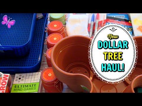 DOLLAR TREE HAUL!  I FOUND THEM!  January 17, 2020   LeighsHome