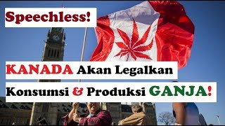 Kanada Akan Legalkan Konsumsi dan Produksi Ganja! [World News]