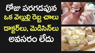 Surprising Garlic Benefits | Garlic Uses & Advantages | Health Tips in Telugu | VTube Telugu