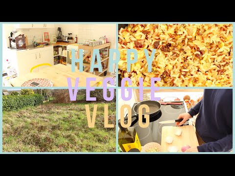 HAPPY VEGGIE VLOG #1 Kitchen tour, yummy & futur jardin