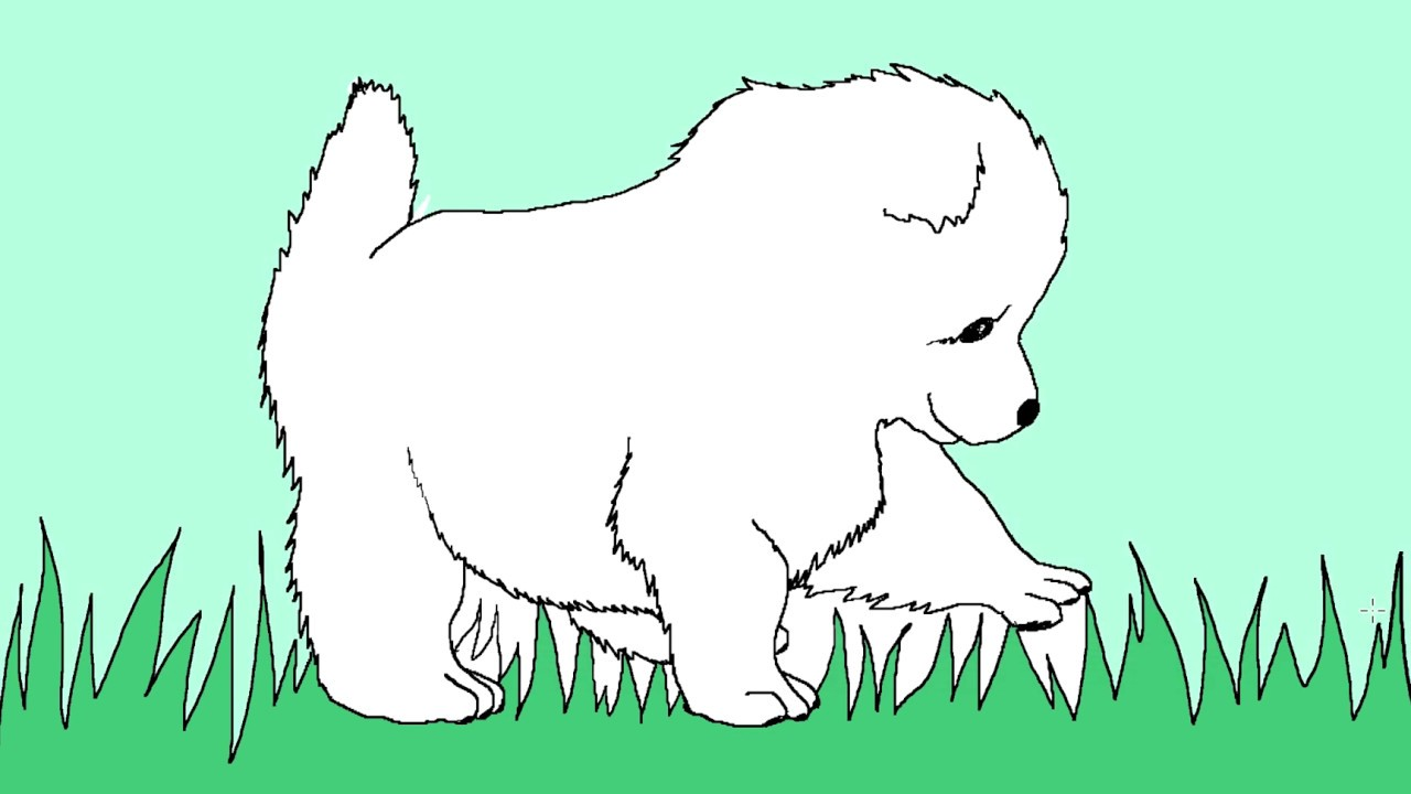 How To Draw A Samoyed Puppy Easy Happy New Year 2019 123tv