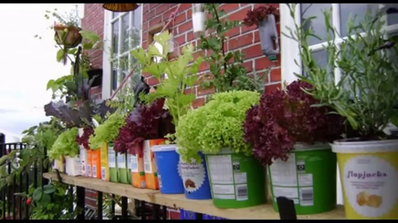 Garden Ideas] Vegetable garden in balcony - YouTube