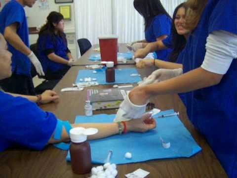 phlebotomy training day - youtube, Human Body