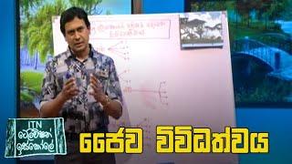 ITN Television Iskole - (2020-05-28) | ITN Thumbnail