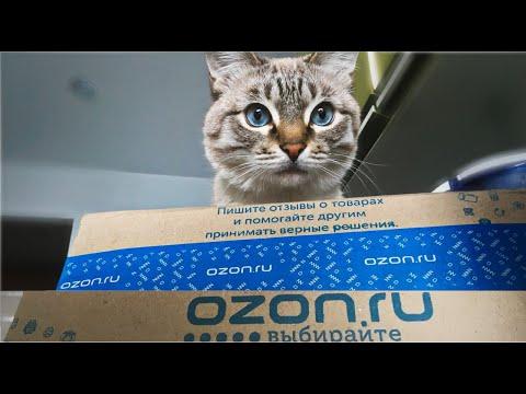 Стоит ли делать заказ на Ozon.ru?