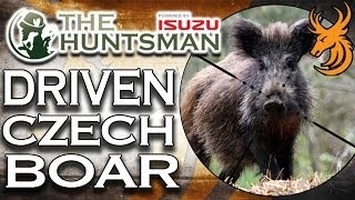 EPIC Driven Wild Boar Hunt in the Czech Republic