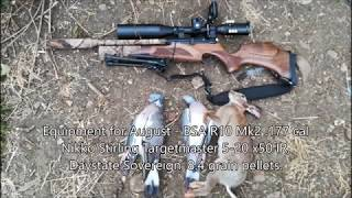 Air Rifle Hunting & Pest Control - 2018 August