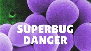Superbug Danger