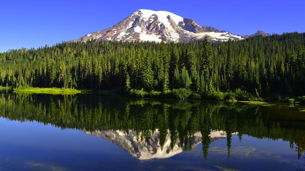 Mt. Rainier National Park - Washington's Peak of the State ...