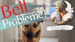Wenn dein Hund draußen ein Geräusch hört und bellt! (Profi-Tipps/Hilfe)