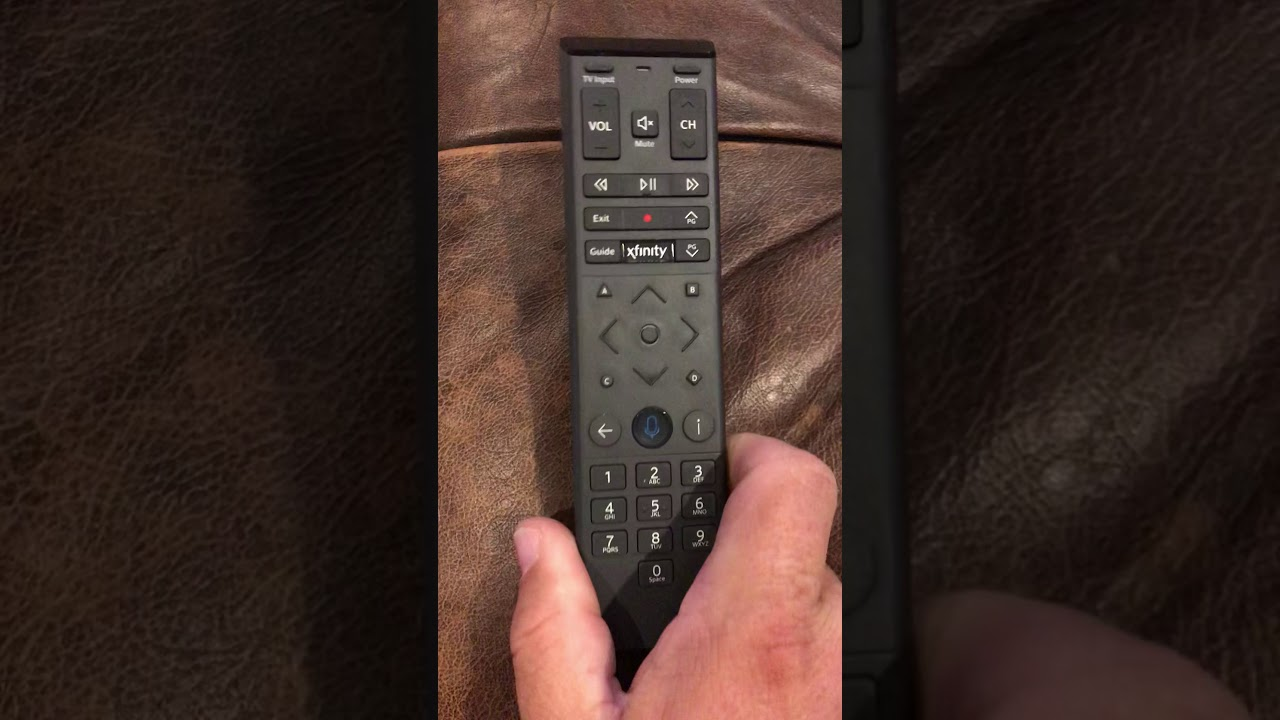Infinity XR15 remote battery replacement